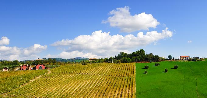 伝統・品質・土地、そして当社の文化価値